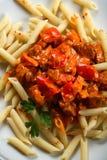 Macaronis avec de la viande et le poivre Photographie stock libre de droits