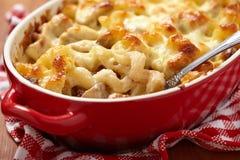 Macaronis avec du fromage, le poulet et les champignons image libre de droits