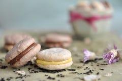 Macarons Lizenzfreie Stockfotos