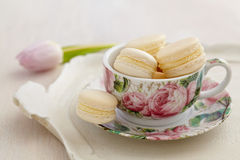 Macarons with buttercream filling in cup with rose patterns Stock Images