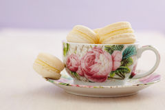 Macarons with buttercream filling in cup with rose patterns Royalty Free Stock Images