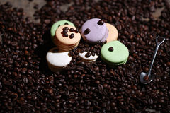 Macarons cakes among coffee beans Stock Images