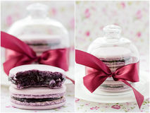 Macarons. Collage. Royalty Free Stock Photography