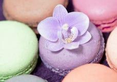Macarons colorés avec l'orchidée Photographie stock libre de droits