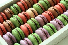 Macarons Color. This is matcha cocoa macarons and Blueberrymacarons,delicious teatime Royalty Free Stock Photography