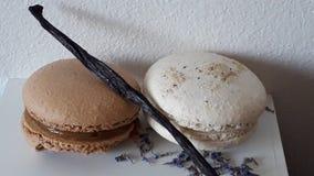Macarons con vaniglia e lavanda Fotografie Stock