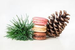 Macarons with cone and spruce branch. Parisian macaroons with cone and spruce branch Royalty Free Stock Photography