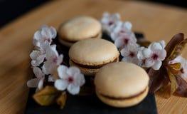 Macarons décorés des fleurs Images libres de droits