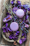 Macarons da alfazema Imagens de Stock Royalty Free