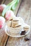 Macarons da baunilha com ganache do chocolate Fotos de Stock