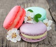 Macarons da cookie Imagem de Stock