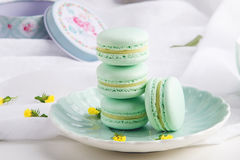 Macarons da hortelã de turquesa Sobremesa delicada francesa para o café da manhã Imagem de Stock Royalty Free