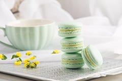 Macarons da hortelã de turquesa Sobremesa delicada francesa para o café da manhã Imagem de Stock