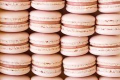 Macarons da morango Fotos de Stock Royalty Free