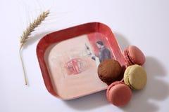 Macarons dans un plat Photos libres de droits
