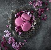Macarons de Blackberry em flores da placa e do lilás do vintage sobre o cinza Imagem de Stock