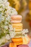 Macarons de bonbons et fleurs blanches de pr? le soir d'?t? dans le jardin image libre de droits
