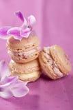 Macarons delicados Imagem de Stock