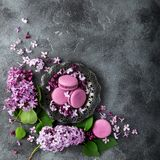 Macarons deliciosos da amora-preta em flores da placa e do lilás do vintage Imagem de Stock Royalty Free