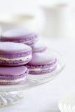 Macarons della lavanda Fotografia Stock
