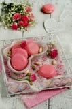 Macarons della vaniglia Immagini Stock