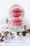 Macarons doce imagem de stock royalty free