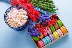 Macarons et guimauve colorés au-dessus de fond bleu Macarons doux dans le boîte-cadeau Image libre de droits