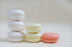 Macarons färgade i pastellfärgade färger som står kolonner Royaltyfri Foto