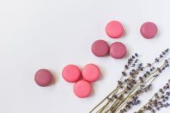 Macarons français colorés Vue supérieure Image stock