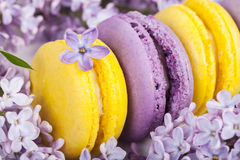 Macarons français traditionnels Photos libres de droits