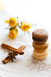 Macarons with gingerbread spices Royalty Free Stock Photo