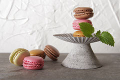 Macarons in gray vintage vase with mint. On a gray stone background stock photography