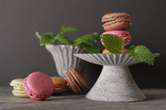 Macarons in gray vintage vase with mint. On a gray stone background stock images