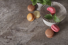 Macarons in gray vintage vase with mint. On a gray stone background royalty free stock photography