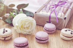 Macarons lilas avec rose et le boîte-cadeau Image libre de droits