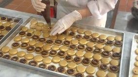 Macarons Making stock video