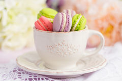 Macarons minuscules colorés dans la tasse Image libre de droits