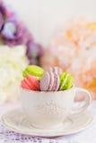 Macarons minuscules colorés dans la tasse Image stock