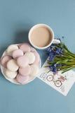 Macarons mous doux de plat Image stock