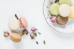 Macarons multicolores et thé Photos stock