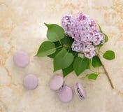 Macarons púrpuras franceses con las flores de la lila fotos de archivo
