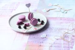 Macarons roxo com enchimento do corinto preto do chocolate Fotografia de Stock Royalty Free