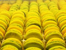Macarons stack in the shop.  Stock Photography