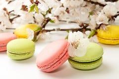 Macarons su fondo bianco contro del branc sbocciante dell'albicocca Immagine Stock Libera da Diritti