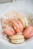 Macarons suaves del color Fotografía de archivo