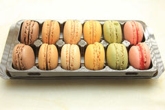 Macarons in a tray Stock Images