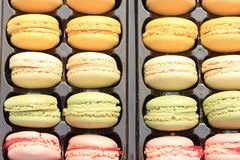 Macarons in a tray Royalty Free Stock Photos