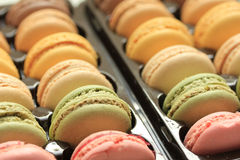 Macarons in a tray Stock Photo