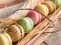 Macaroon μπισκότα Στοκ Εικόνες
