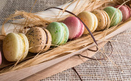 Macaroon cookies Royalty Free Stock Image